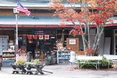 2014-10-21 東京 Day 4 輕井澤:10 往雲場池-01.JPG