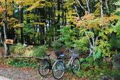 2014-10-21 東京 Day 4 輕井澤:10 往雲場池-25.JPG