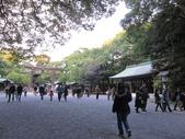 2012-11-25 東京自由行 Day 4 -- 銀杏並木、表參道、明治神宫:07 明治神宮.JPG