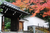 2013-11-28 關西賞楓 Day 3 東福寺:04 往東福寺路上-10.JPG