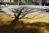 2013-11-30 關西賞楓 Day 5 大阪:04 大阪城公園-11.JPG