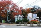 2014-10-21 東京 Day 4 輕井澤:09 舊輕井澤-01-.JPG