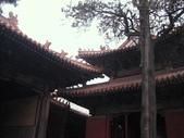 2010-10-17 濟南 曲阜一日遊:IMG_4940.JPG