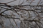2014-02-15 武陵農場露營、合歡山賞雪:04 合歡山-03.JPG