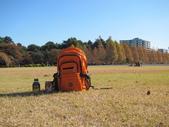 2012-11-25 東京自由行 Day4 -- 新宿御苑:15 新宿御苑.JPG