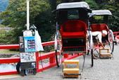 2014-10-20 東京 Day 3 箱根湯本、千葉港:01 箱根湯本-12.JPG