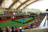 2014-05-25 香港三日遊  Day 1:03 沙田馬場-07.JPG