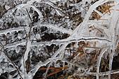 2014-02-15 武陵農場露營、合歡山賞雪:04 合歡山-04.JPG