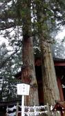 2014-10-21 東京 Day 5 日光:05 二荒山神社-07.jpg