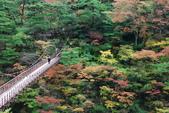 2014-10-23 東京 Day 6 鬼怒川溫泉:06 鬼怒川溫泉-10.JPG