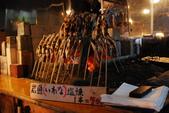 2014-10-21 東京 Day 4 輕井澤:08 白絲瀑布-16.JPG