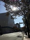2016-11-16 博多拉麵、廣島縮景園:2016-11-16 11.22.25.jpg