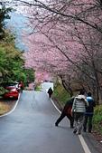2014-02-15 武陵農場露營、合歡山賞雪:10武陵農場-22.JPG