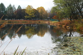 2014-10-21 東京 Day 4 輕井澤:06 輕井澤 矢崎公園-23.JPG