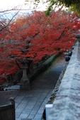 2013-11-29 關西賞楓  Day 4 清水寺:01 清水寺-14.JPG