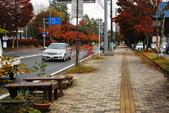 2014-10-21 東京 Day 4 輕井澤:05 輕井澤-08.JPG