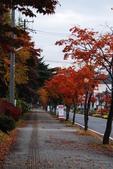 2014-10-21 東京 Day 4 輕井澤:05 輕井澤-10.JPG