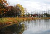 2014-10-21 東京 Day 4 輕井澤:06 輕井澤 矢崎公園-07.JPG