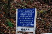 2014-10-21 東京 Day 4 輕井澤:08 白絲瀑布-20.JPG