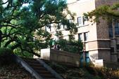 2014-10-25 東京 Day 8 東京大學、成田機場:02 東大-16.JPG