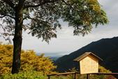 2014-10-20 東京 Day 3 箱根舊街道(甘酒茶屋、見晴茶屋):03 見晴茶屋-04.JPG