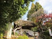 2012-11-24 東京自由行 Day3 -- 深大寺:18 深大寺.JPG
