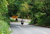 2014-10-20 東京 Day 3 箱根舊街道(甘酒茶屋、見晴茶屋):04 箱根舊街道-02.JPG