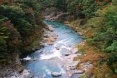 2014-10-23 東京 Day 6 鬼怒川溫泉:06 鬼怒川溫泉-03.JPG
