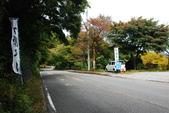 2014-10-20 東京 Day 3 箱根舊街道(甘酒茶屋、見晴茶屋):04 箱根舊街道-03.JPG