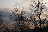 2014-02-15 武陵農場露營、合歡山賞雪:11 合歡山-36.JPG