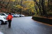 2014-10-21 東京 Day 4 輕井澤:08 白絲瀑布-19.JPG