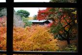 2013-11-28 關西賞楓 Day 3 東福寺:05 東福寺-04.JPG