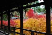2013-11-28 關西賞楓 Day 3 東福寺:05 東福寺-05.JPG