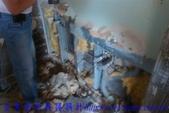 公寓舊屋翻新:裝修木作工程 (1