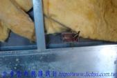公寓舊屋翻新:裝修木作工程 (7
