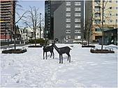 北海道冬之旅2/5:帶廣5