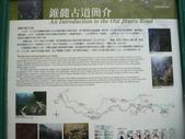 錐麓古道-1010520:錐麓古道 (12).JPG