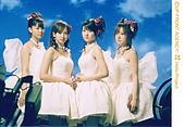 新垣里沙-1:会報写真 大阪恋の歌収録風景
