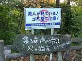 近江國攻略‧長濱城+小谷城:P1040530.jpg