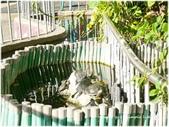 1090615五福國小超美旅宿風的彩色校園2.0:P1340476.JPG