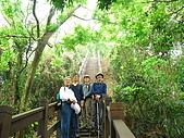 龍過脈森林步道:龍過脈08.JPG