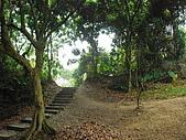 龍過脈森林步道:龍過脈11.JPG