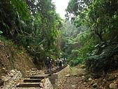 龍過脈森林步道:龍過脈14.JPG