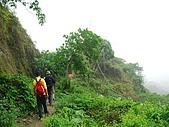 龍過脈森林步道:龍過脈15.JPG