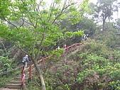 龍過脈森林步道:龍過脈18.JPG