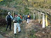 細道邦山&馬那邦山:20080103細道邦山2.JPG