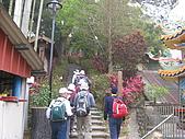 龍過脈森林步道:龍過脈04.JPG