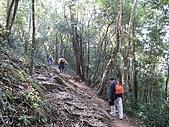 細道邦山&馬那邦山:20080103馬那邦山1.jpg