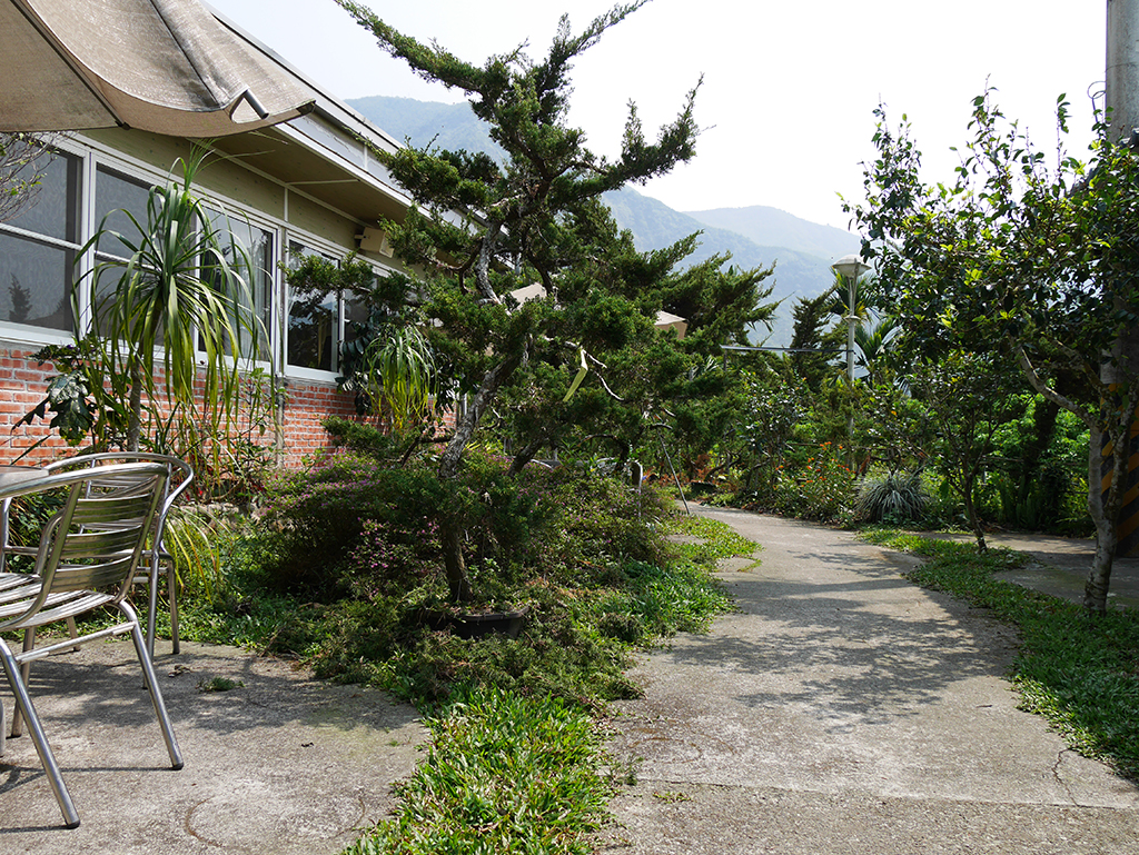 13植物廊道.jpg - 雲林古坑海宴休閒農莊