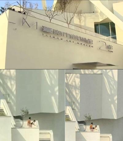 「台南美術館」大白天男女野外老漢推車遭偷拍!